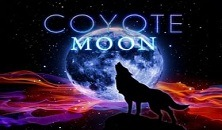Play Coyote Moon Igt slots online free