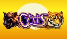Cats slots online