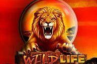The Wild Life slots free online