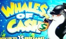Free Wwhales Of Cash slots online