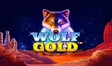 Wolf Gold Slots Online